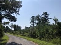 14.201+/- Acres A-1 Bartow County : White : Bartow County : Georgia