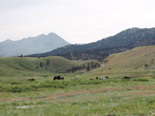 Marble Quarry Creek Ranch : Wheatland : Platte County : Wyoming