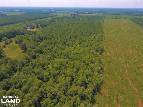 264 Timber Tract : Farmville : Greene County : North Carolina