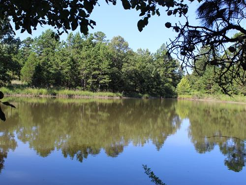 Acreage in Izard County Arkansas : Oxford : Izard County : Arkansas