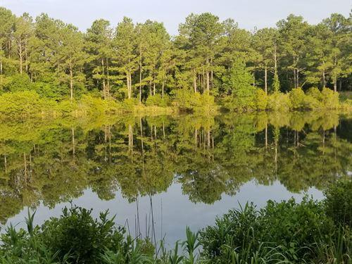 Hichitee Creek Tract : Cusseta : Chattahoochee County : Georgia