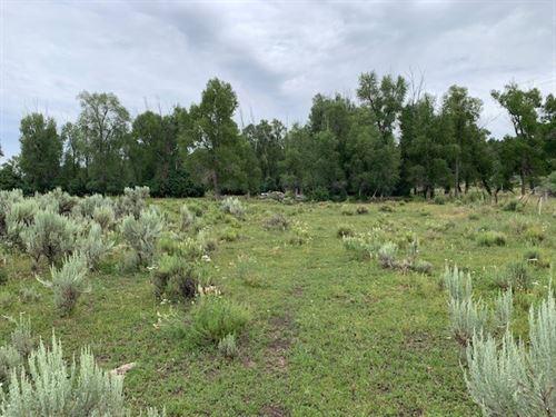 100 Acre Ranch Water Power South : Tierra Amarilla : Rio Arriba County : New Mexico