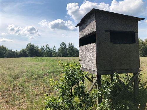 Versitile To Hunt & Build : Newaygo : Michigan