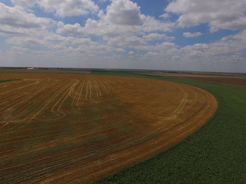 Southwest Sherman County Irrigated : Goodland : Sherman County : Kansas