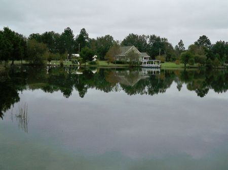 6.5 Acre Farm With Home : Metter : Candler County : Georgia