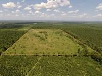 60 Acres, Union County, Moro Bay : El Dorado : Union County : Arkansas