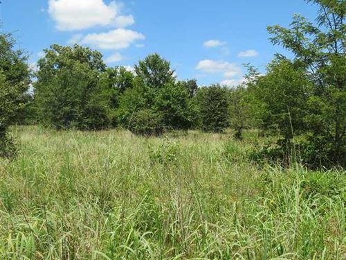 Developmental Acreage For Sale : Rattan : Pushmataha County : Oklahoma