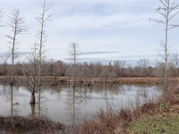 Price Reduced, 75 Acre Duck Ho : Perry : Arkansas