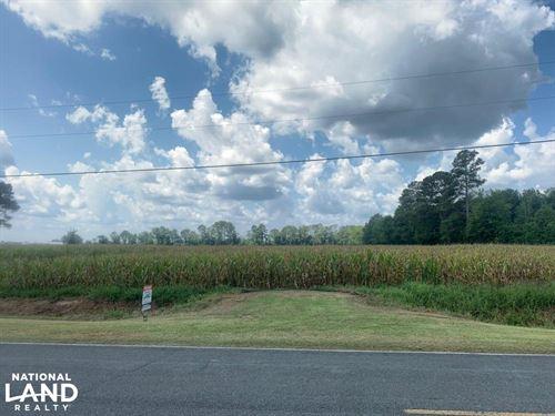 Penderlea Farm Land & Homestead : Burgaw : Pender County : North Carolina