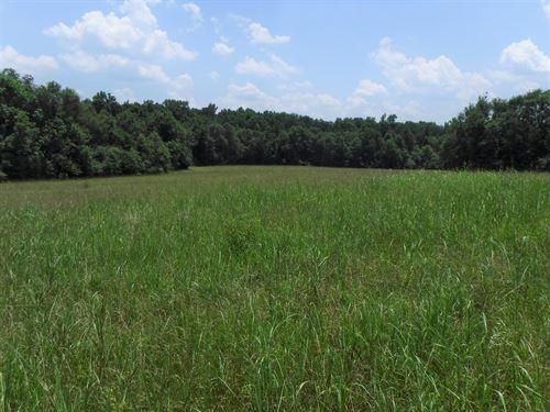Briarcreek Farm Tract A : Covington : Newton County : Georgia