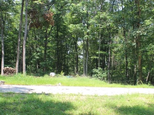 Fairview Rd, 35 Acres : Ray : Vinton County : Ohio