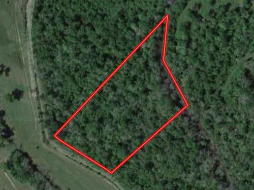 Unrestricted 6.64 Acres In Shepherd : Shepherd : San Jacinto County : Texas