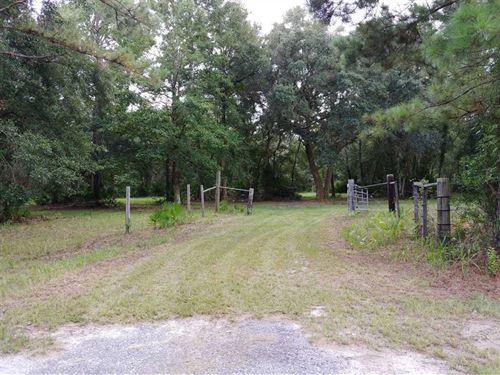 10 Acres of Land In Camden County : Waverly : Camden County : Georgia