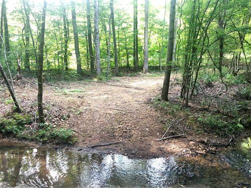 180 Acres Southern Wayne County TN : Iron City : Wayne County : Tennessee