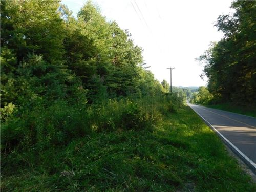 Mountain Property Creek Frontage : Laurel Springs : Alleghany County : North Carolina