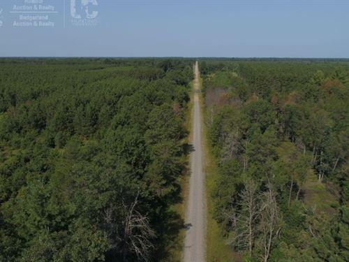 Hunting Land in Adams County, WI : Hancock : Adams County : Wisconsin