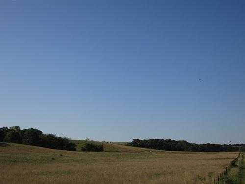 Sullivan County MO Grass Farm : Newtown : Sullivan County : Missouri
