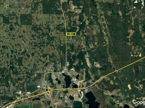 127 Acres Of Agricultural Land : Polk City : Polk County : Florida