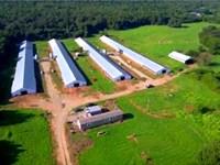 Arkansas Poultry Farm With 2006 Age : Magazine : Logan County : Arkansas