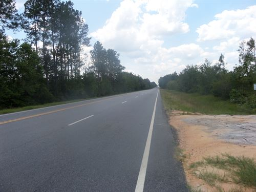 17 Acres Cleared For Homesite : Jesup : Wayne County : Georgia