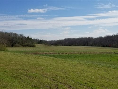 Beautiful 200 Acre Farm : Columbiana : Shelby County : Alabama