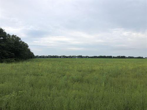 The Beedeville Farm : Beedeville : Jackson County : Arkansas