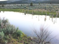 Best You'll Find, Nice Canal, Power : Madeline : Lassen County : California