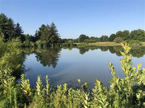 345 Private Acres, Land For Sale : Anderson : Madison County : Indiana
