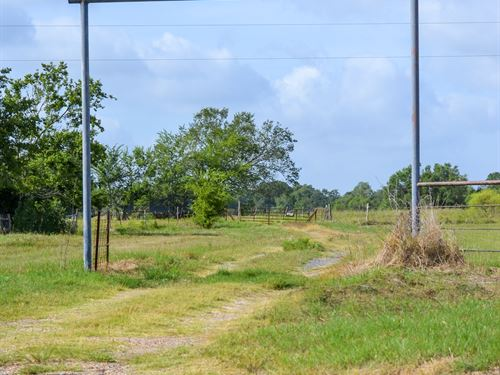 Great Property : North Zulch : Madison County : Texas