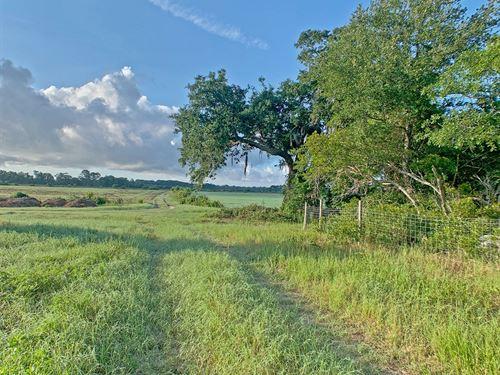 Henry Farms : Saint Helena Island : Beaufort County : South Carolina
