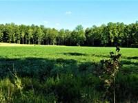 173 Ac, Pine Creek Bottoms, 1/2 : Bolivar : Hardeman County : Tennessee