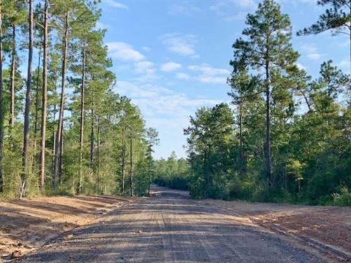 64.72 Acres Residential Development : Sumrall : Lamar County : Mississippi