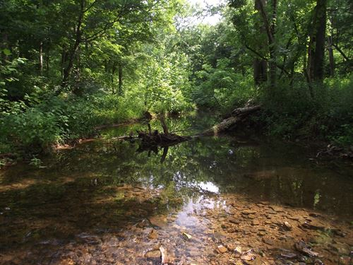 Recreational Land For Sale : Hohenwald : Lewis County : Tennessee