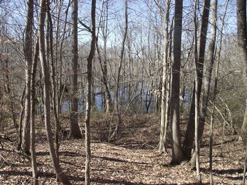 Large Acreage Hunting Land For Sale : Saltillo : Hardin County : Tennessee
