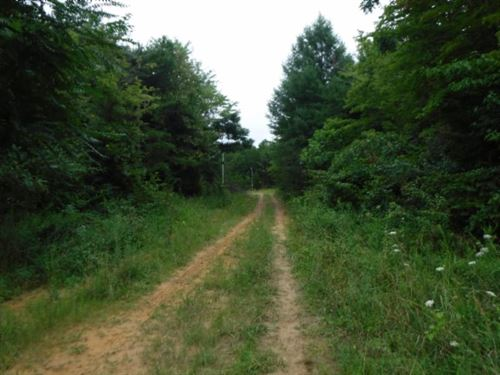 40.85 Acres, Oil Wells : Sunbright : Morgan County : Tennessee