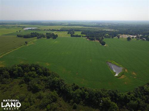 125.23 Acre Brushy Creek Duck Hunti : Wynne : Cross County : Arkansas