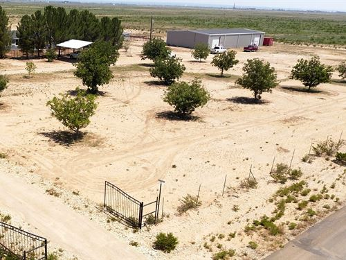 Property Southeastern Nm, Carlsbad : Carlsbad : Eddy County : New Mexico