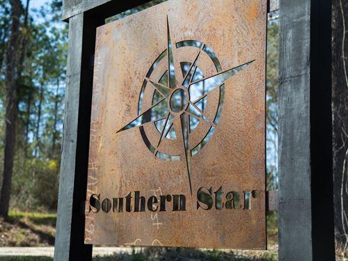 12 Acres Southern Star T-2 : Corrigan : Polk County : Texas