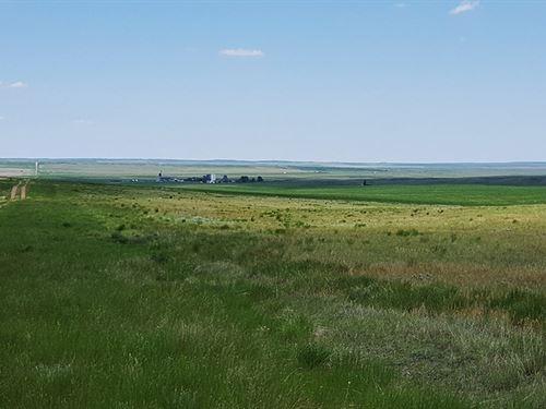 Richland Grass Ranch : Richland : Daniels County : Montana