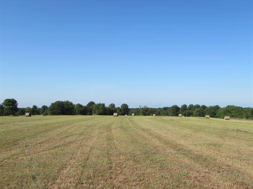 Rainwater 160 : Boynton : Okmulgee County : Oklahoma