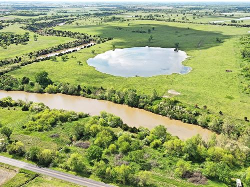 Sprawling Cattle Ground Over 70 : Amoret : Bates County : Missouri