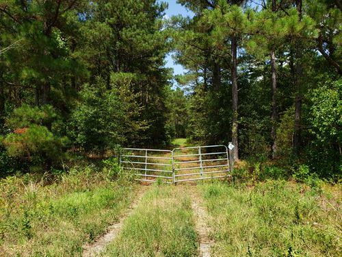 Timber, Hunting, Future Development : Henderson : Houston County : Georgia