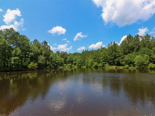 355 Acres With A Home In Jasper Cou : Vossburg : Jasper County : Mississippi