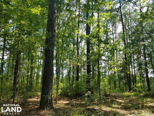 Cotton Hill Road Recreation & Homes : Eufaula : Barbour County : Alabama