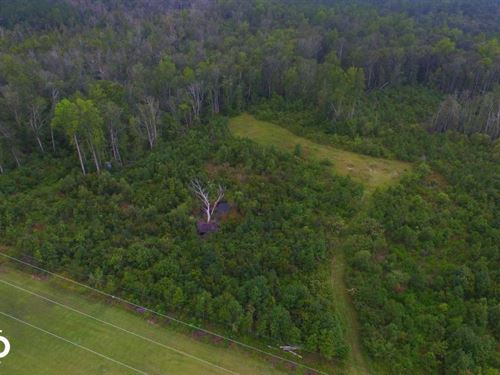 Leland Private Homestead : Leland : Brunswick County : North Carolina
