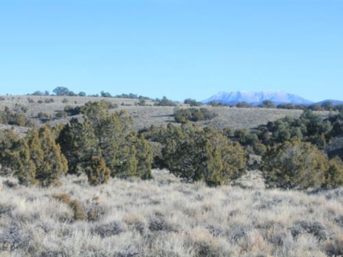 Ranch Land / Creek Murdock Mountain : Montello : Elko County : Nevada