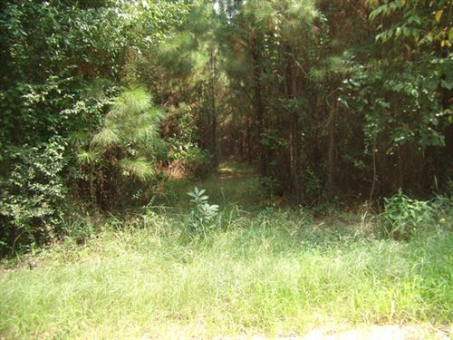119.80 Acres in Roxie, MS : Roxie : Franklin County : Mississippi
