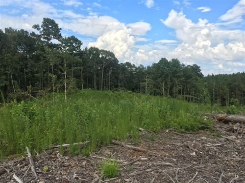 8.99 Acres in Hazlehurst, MS : Hazlehurst : Copiah County : Mississippi