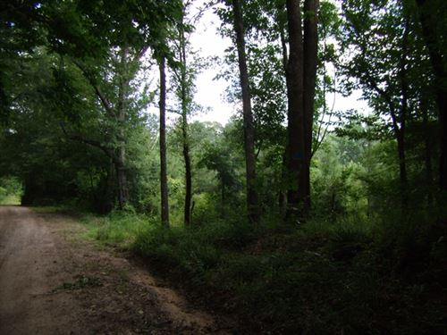 121.89 Acres in Woodville, MS : Woodville : Wilkinson County : Mississippi