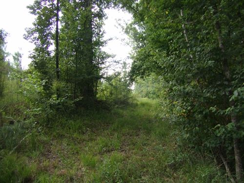 362.84 Acres in Roxie, MS : Roxie : Franklin County : Mississippi